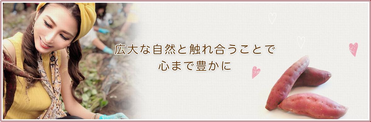 Slide フジテレビ「東京女子箱」